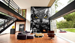 Owl - The Great Horned Owl